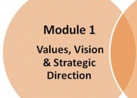 Module 1: Values, vision and strategic decision making (self-access)