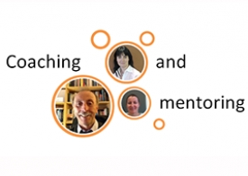 Coaching and mentoring sessions (online)